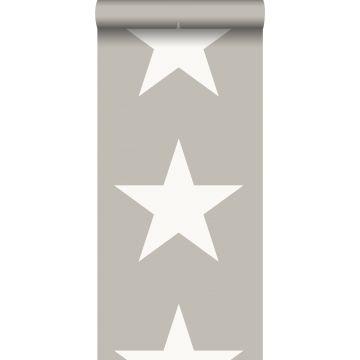 papel pintado estrella gris cálido