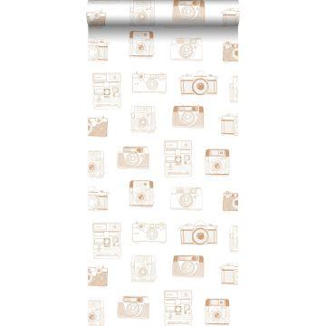 papel pintado cámaras polaroid marrón cobre brillante