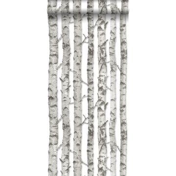 papel pintado troncos de abedul gris claro cálido