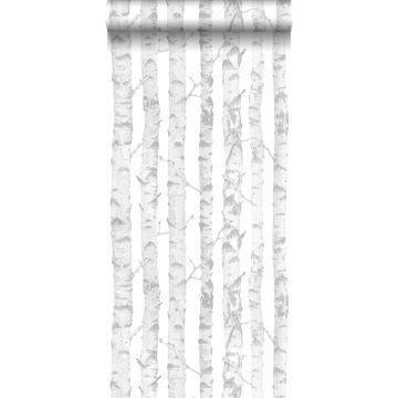 papel pintado troncos de abedul plata y blanco