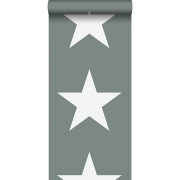 papel pintado estrellas verde grisáceo