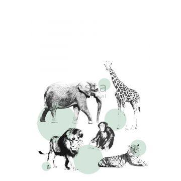fotomural animales menta verde