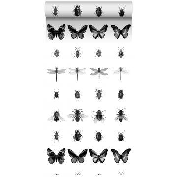 papel pintado XXL dibujo a la pluma de insectos blanco y negro