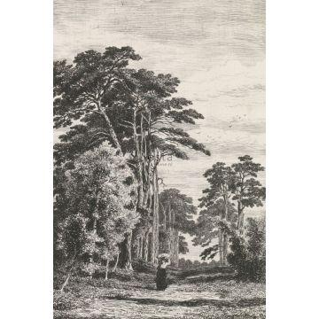 fotomural paisaje boscoso blanco y negro