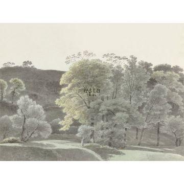 fotomural paisaje boscoso menta verde