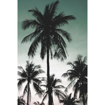 fotomural palmeras verde pertróleo