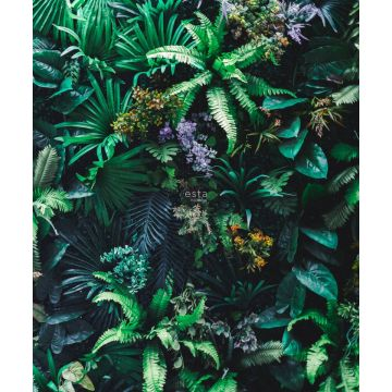 fotomural plantas tropicales verde