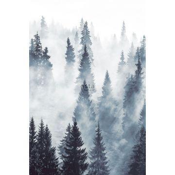 fotomural bosque de niebla verde
