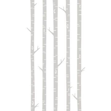 fotomural troncos de abedul gris