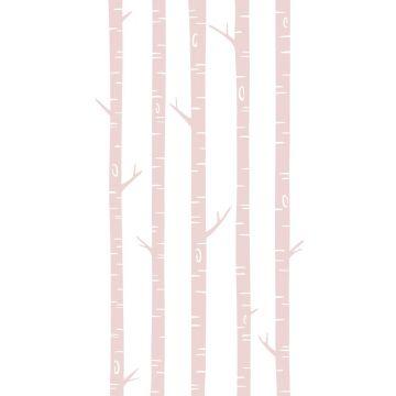 fotomural troncos de abedul rosa suave