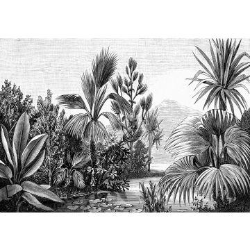 fotomural paisaje tropical blanco y negro