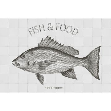 mural decorativo autoadhesivo pez negro